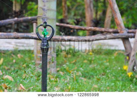 sprinkler watering tool in  green gass garden