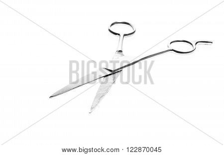Hairdresser or barber silver professional scissors for cutting hair. Isolated on white background