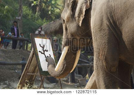 CHIANG MAI THAILAND - March 13: 15th Annual National Thai Elephant Day Elephant show painting on paper at maesa elephant camp Mar 13 2014 in Chiang Mai Thailand.