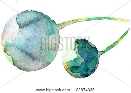 Abstract hand drawn grunge watercolor two round stains blue yellow green color texture with wet brush painted smudges and blurs on white backdrop