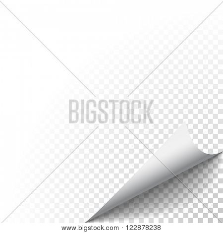 Paper corner peel. Page curled fold with shadow. Blank sheet of folded sticky paper note. Vector illustration sticker corner twisted up on transparent background.