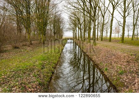Bare trees perfectly reflected in the mirror like surface of a small stream in the park on a cloudy day at the end of the winter season.