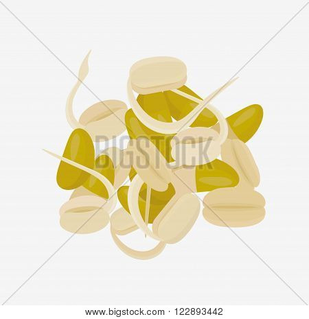 Soy sprouts. Isolated vector illustration. Flat lay.