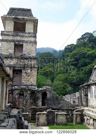A plaza at the Mayan archeological site Palenque in Chiapas Mexico bordered by jungle.