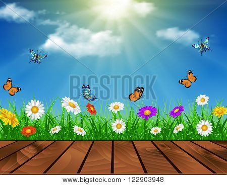 Wooden deck in front of green grass. daisy vector background  summer design flower green garden nature illustration. Spring background of blue sky with grass and butterfly.