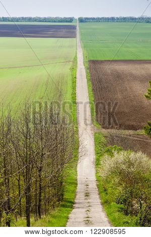 spring landscape with fields in Southern Moravia, Czech Republic