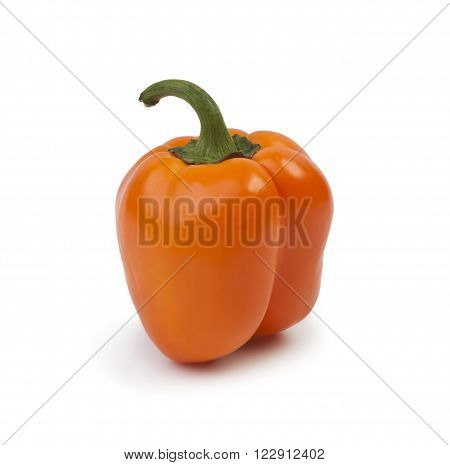 orange paprika (pepper) isolated on a white background.