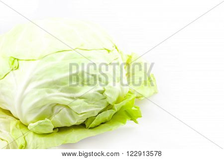 A Cabbage on the white background, represent to healthy, clean. can use to be background  or image for any article