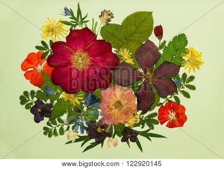 A bouquet of flowers on a light background. Pressed dried rosehip flowers clematis geraniums violets dandelion clover and lupine. Picture from dry flowers.