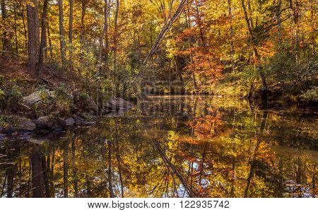 Arkansas fall landscape Petit Jean state park.