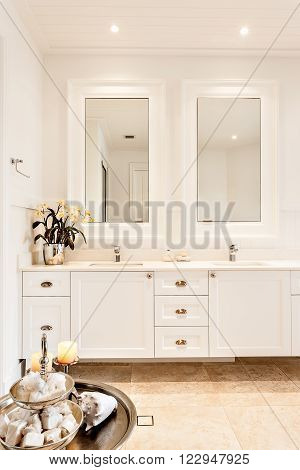 Modern washroom with two mirrors in a luxury house and silver color fancy plant on the countertop near to sweet bowl
