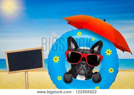 french bulldog dog relaxing on air mattress, with sunglasses  on summer vacation holidays at the beach and umbrella and blackboard banner or placard