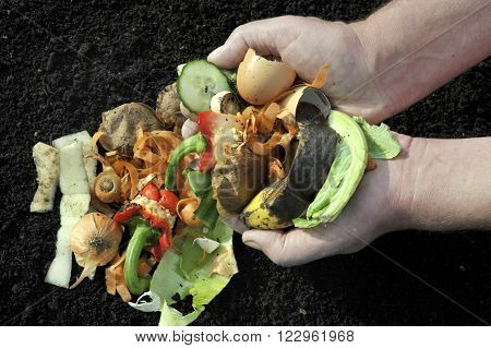Handling Kitchen food and garden vegetable waste materials for home recycling via composting.