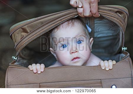 The child sits in a road suitcase, traveling, collecting things ** Note: Visible grain at 100%, best at smaller sizes