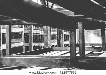 OSWIECIM, POLAND - JULY 3, 2009: Auschwitz II - Birkenau view of the beds inside one of the wooden barracks