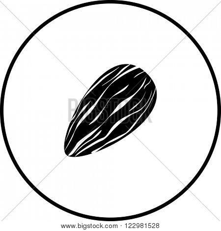 almond symbol
