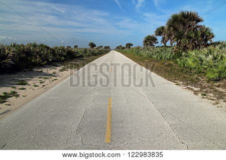 Main Road through the Canaveral National Seashore in Cape Canaveral, Florida