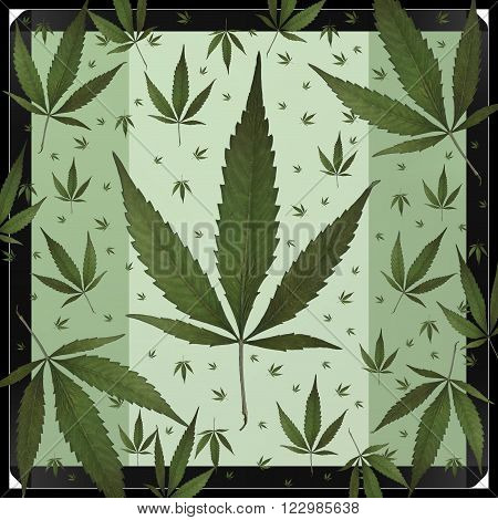A square format design using weed leaves.