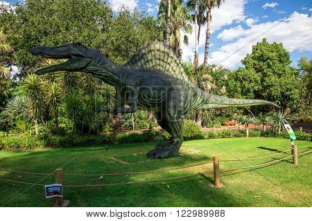 PERTH, WA / AUSTRALIA - MARCH 13: Standing Spinosaurus display model in Perth Zoo as part of Zoorassic exhibition in March 2016