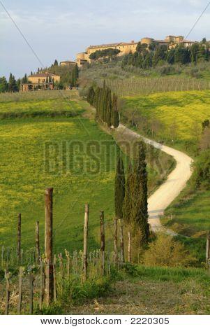 Pienza Landscape