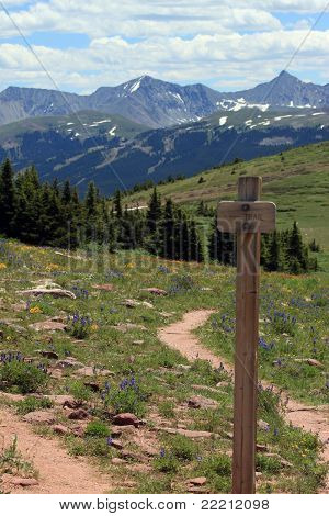 Mountain Trail Sign at Fork