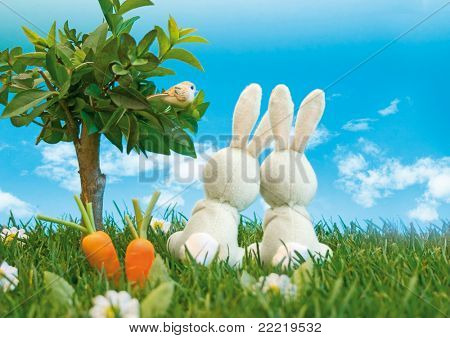 two easter-bunnys sitting in a meadow beside a tree looking into the blue sky