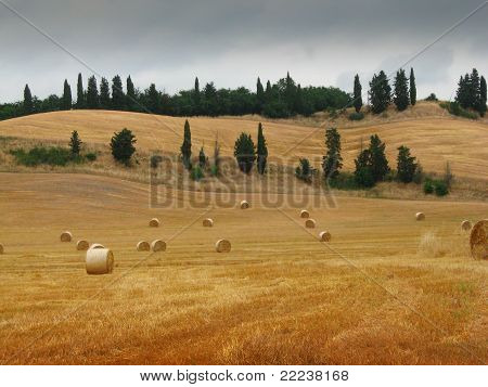Tuscan Hills With Bales Of Hay
