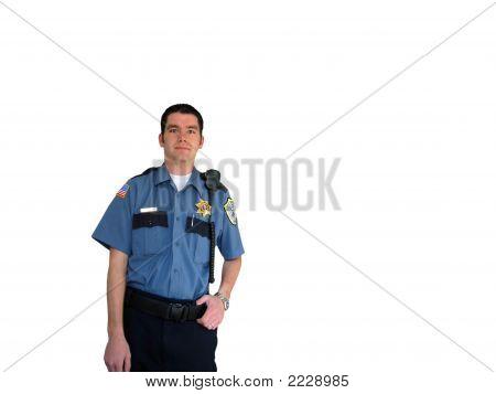 Officer In Uniform 3