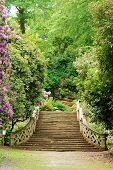 image of hever  - Anne Boleyn garden walk with stairs hever castle England