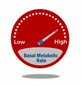 Basal Metabolic Rate Indicator poster
