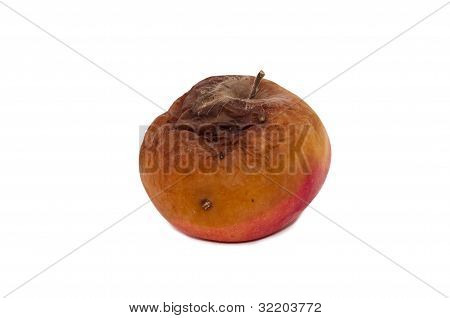 red rotten apples