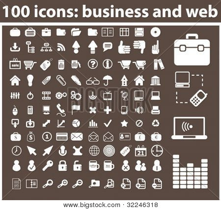 100 icons: business and web. vector