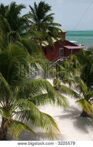 View From Above The Beach At Caye Caulker