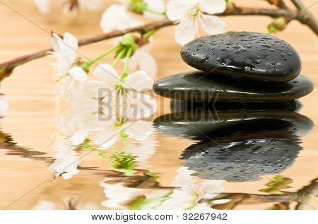 Gestapelte Therapie Steine und blühenden Kirschbaum Zweig mit Wasser-Reflektion