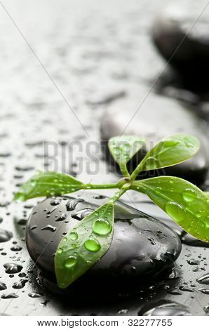 Green leaf and spa stones with water drops on dark wooden surface