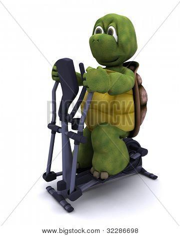 3d render of a tortoiserunning on a cross trainer