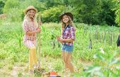 Sisters Together Helping At Farm. Girls Planting Plants. Rustic Children Working In Garden. Planting poster