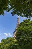 The Eiffel Tower, A Wrought-iron Lattice Tower On The Champ De Mars In Paris, France, Photographed T poster