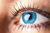 Beautiful Human Eye Close-up. Young Woman Blue One Eye Macro Shoot. Macro Shot Closeup Eye Looking U poster