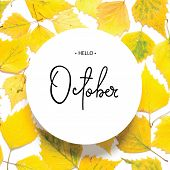Inscription Hello October. Pattern Of Yellow Autumn Leaves Isolated On White. - Image poster