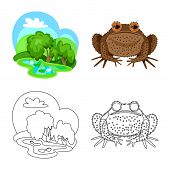 Vector Design Of Wildlife And Bog Sign. Collection Of Wildlife And Reptile Stock Symbol For Web. poster