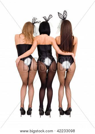 Sexy Playgirls Wearing A Bunny Costumes, Back View