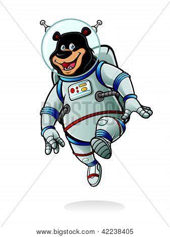 Bear Astronaut