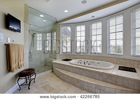Master bath in luxury home with step up bathtub