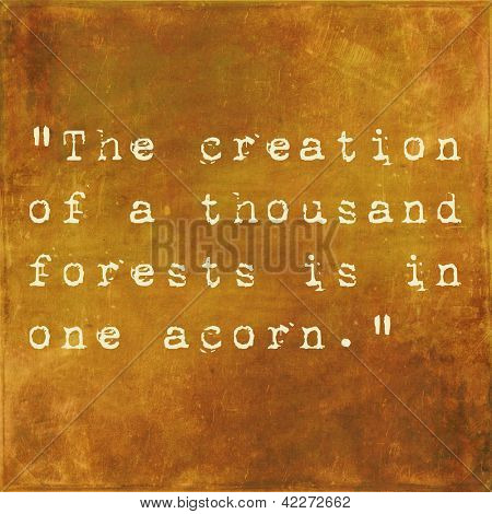Inspirational quote by Ralph Waldo Emerson on earthy brown background