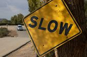 Slow Us Traffic Sign poster