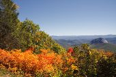 pic of hollow log  - Looking Glass Rock on the Blue Ridge Parkway in NC Log Hollow Overlook - JPG