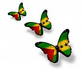 Three  Sao Tome And Principe Flag Butterflies, Isolated On White