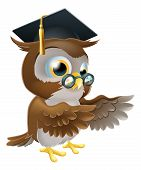 image of convocation  - A cute cartoon wise owl wearing a mortar board professor or teacher - JPG