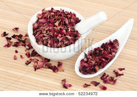 Rose flower petals used in chinese and natural alternative herbal medicine. Rosa chinensis.